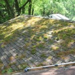 Roof Cleaning in Ridgewood, NJ
