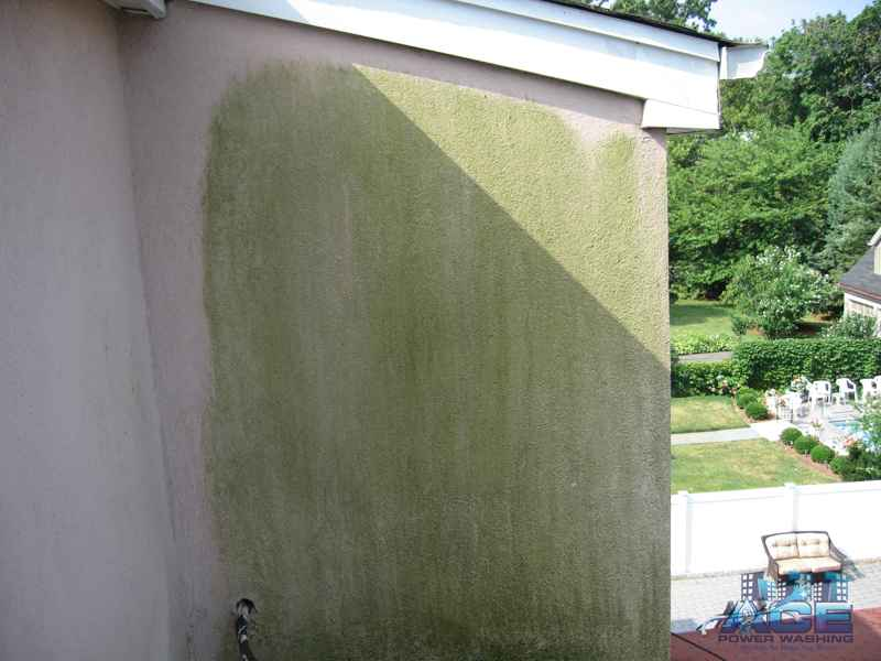 More green mold on Stucco siding in Harrington Park, NJ