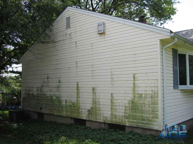 Power Washing Vinyl siding to remove green mold in Norwood, NJ