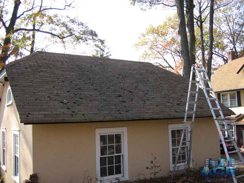 Green Moss on Roof Needs Roof Cleaning in Montclair, NJ